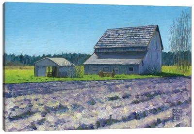 Boyer Barn Canvas Art Print
