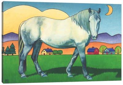 Charmeon Canvas Art Print