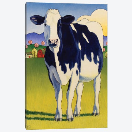A Good Lookin Cow Canvas Print #SNM1} by Stacey Neumiller Canvas Print