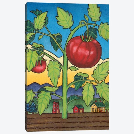 Dad's Tomato Canvas Print #SNM25} by Stacey Neumiller Canvas Wall Art
