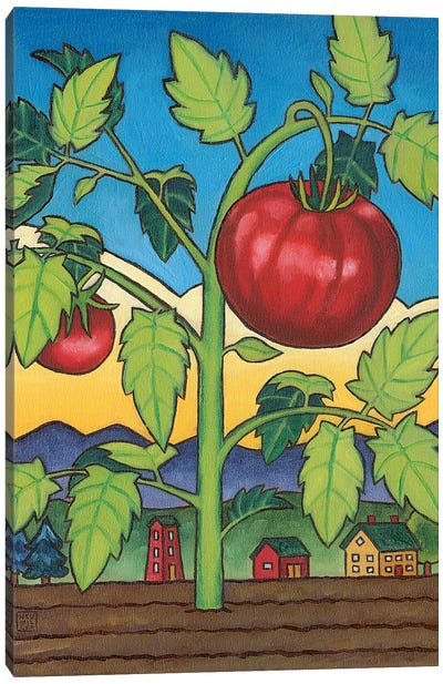 Dad's Tomato Canvas Art Print