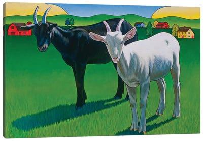 Harold And Maude Canvas Art Print