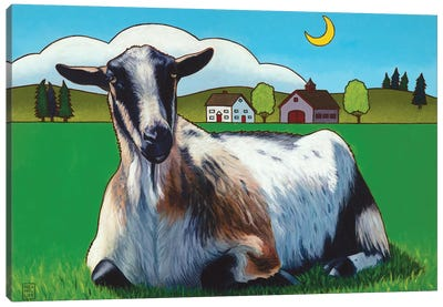 Haute Goature Canvas Art Print