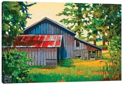 Hidden Sheep Barn Canvas Art Print