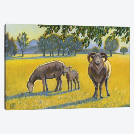 Baa, Ram, Ewe Canvas Print #SNM4} by Stacey Neumiller Canvas Artwork