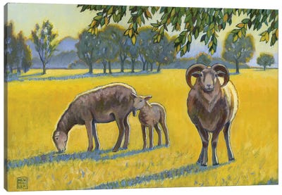 Baa, Ram, Ewe Canvas Art Print