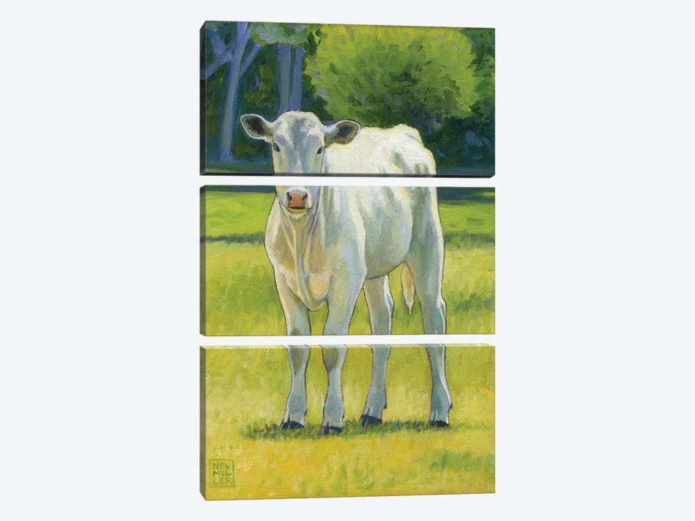 Pearl by Stacey Neumiller 3-piece Canvas Art