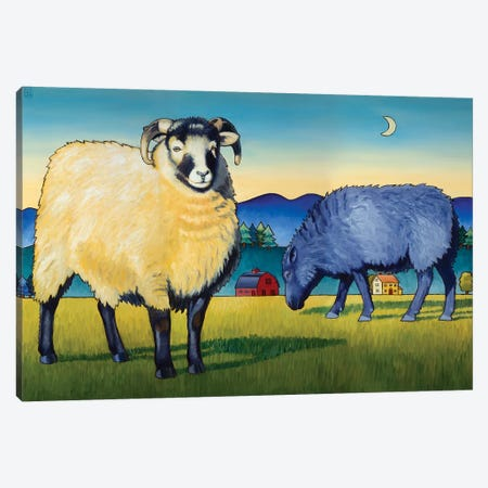 Sheep At Sunset Canvas Print #SNM77} by Stacey Neumiller Art Print
