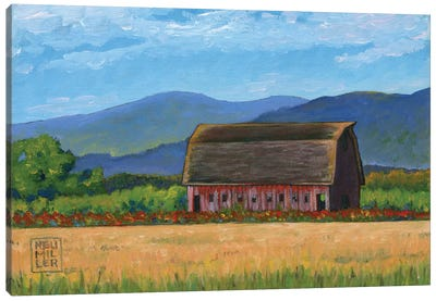 Skagit Valley Barn VII Canvas Art Print
