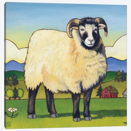 Tara's Sheep Canvas Print #SNM93} by Stacey Neumiller Canvas Artwork