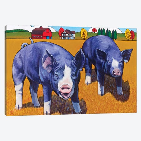 Big Pigs Canvas Print #SNM9} by Stacey Neumiller Art Print