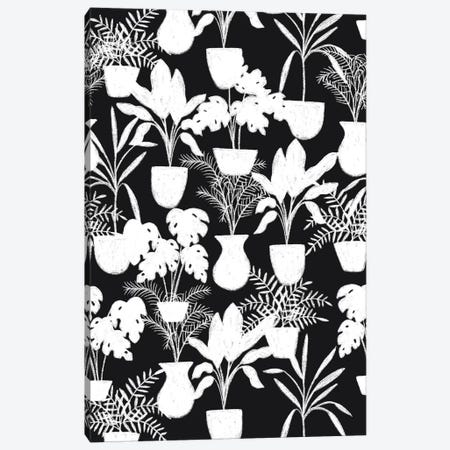 Abstract Flora I Canvas Print #SNN12} by Taylor Shannon Canvas Print