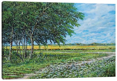Summer Field Canvas Art Print