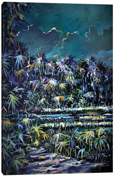 Midnight Palms Canvas Art Print