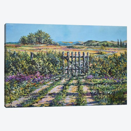 Mary's Field Canvas Print #SNS113} by Sinisa Saratlic Canvas Art