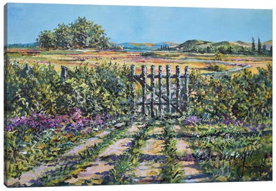 Mary's Field Canvas Art Print