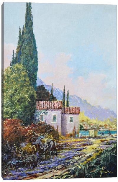 Dalmatia Canvas Art Print