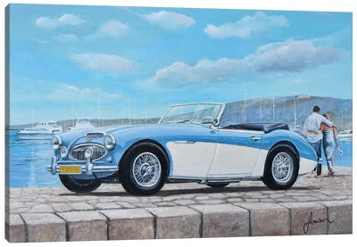 1952-1967 Austin Healey Canvas Art Print
