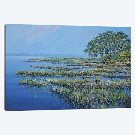 Marshland Canvas Print #SNS70} by Sinisa Saratlic Canvas Artwork