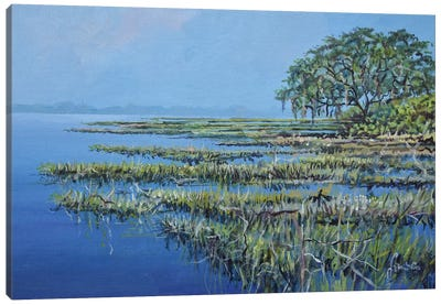 Marshland Canvas Art Print