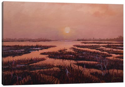 Red Marsh Canvas Art Print