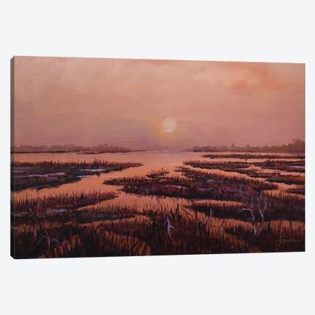 Red Marsh Canvas Print #SNS71} by Sinisa Saratlic Canvas Artwork