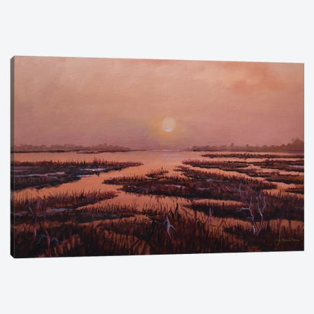 Red Marsh Canvas Print #SNS71} by Sinisa Saratlic Canvas Artwork