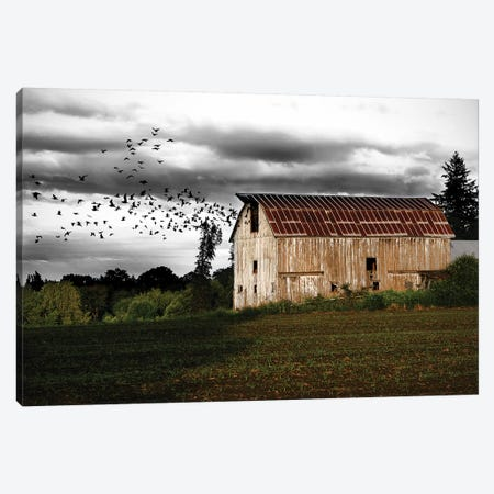 Birds Barn Canvas Print #SNT26} by Saint and Sailor Studios Art Print