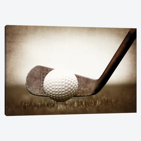 Golf Iron Vintage Grass Canvas Print #SNT52} by Saint and Sailor Studios Art Print