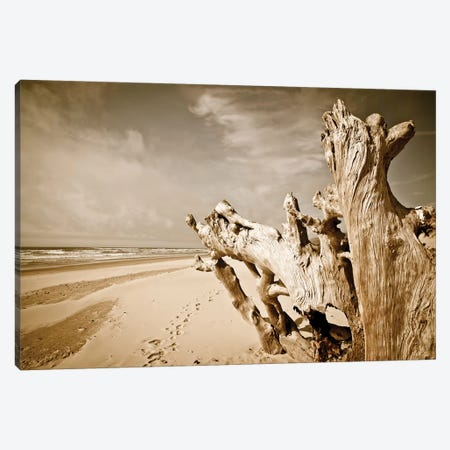 Oregon Coast Beach Wood Canvas Print #SNT74} by Saint and Sailor Studios Canvas Art