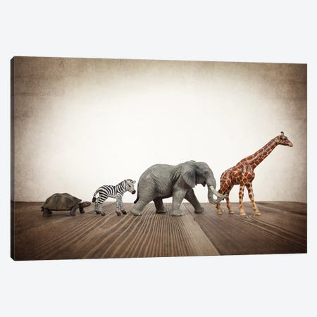 Safari Line I Canvas Print #SNT84} by Saint and Sailor Studios Canvas Art Print