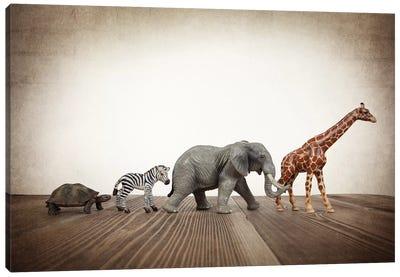 Safari Line I Canvas Art Print