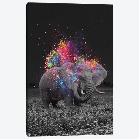 True Colors Elephant Canvas Print #SOA106} by Soaring Anchor Designs Canvas Art