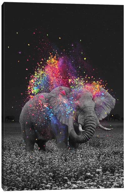True Colors Elephant Canvas Art Print