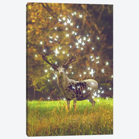 White Deer Light Within Canvas Print #SOA107} by Soaring Anchor Designs Canvas Artwork
