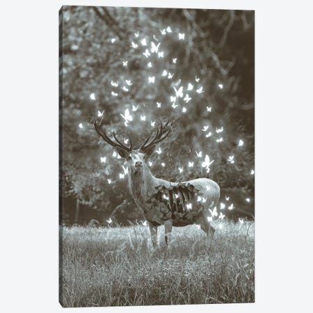 White Deer Light Within In Black & White Canvas Print #SOA108} by Soaring Anchor Designs Canvas Print