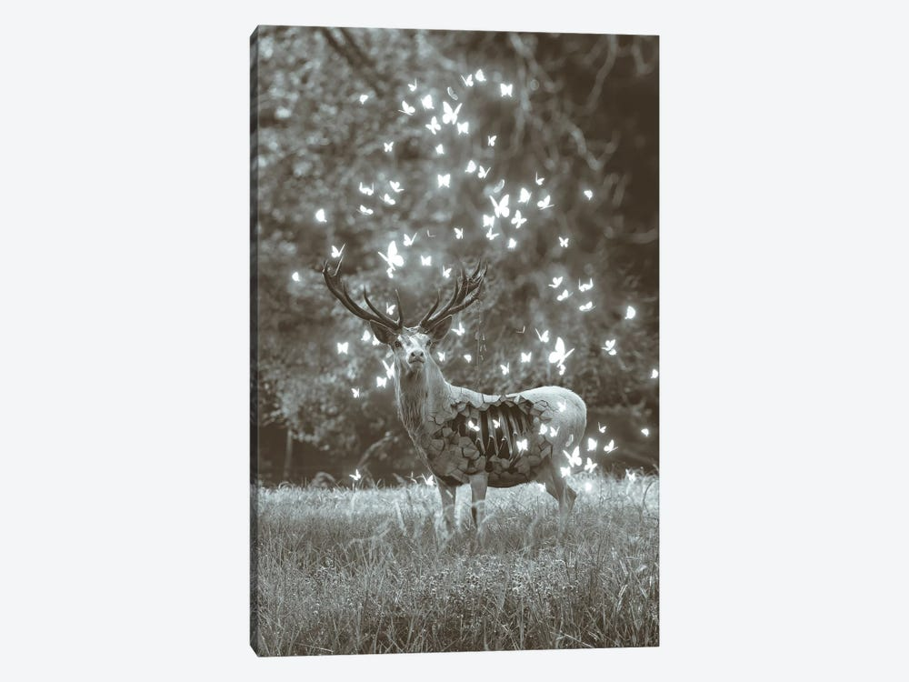 White Deer Light Within In Black & White by Soaring Anchor Designs 1-piece Canvas Wall Art