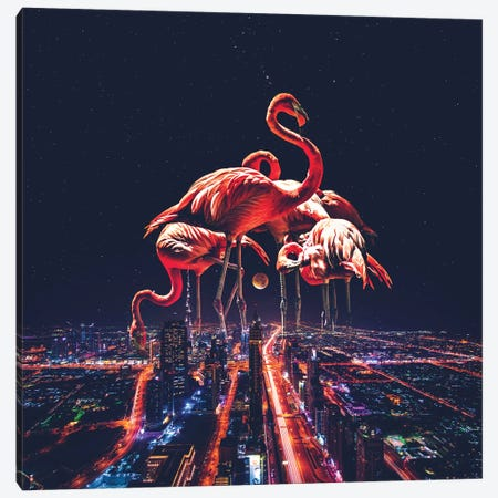 Flamingo Nights Faded Canvas Print #SOA112} by Soaring Anchor Designs Canvas Art