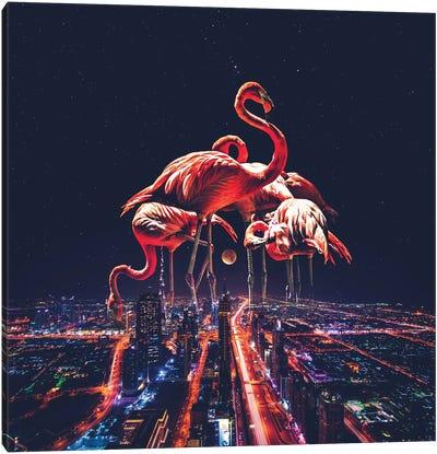 Flamingo Nights Faded Canvas Art Print