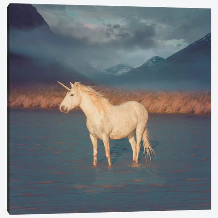Unicorn Oil Slick Canvas Print #SOA123} by Soaring Anchor Designs Canvas Art Print