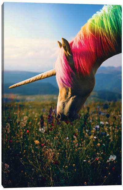 Daydreaming Unicorn Rainbow Canvas Art Print