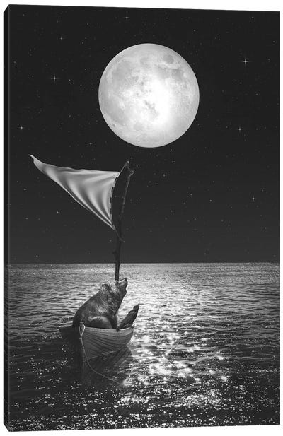 Adrift Canvas Art Print