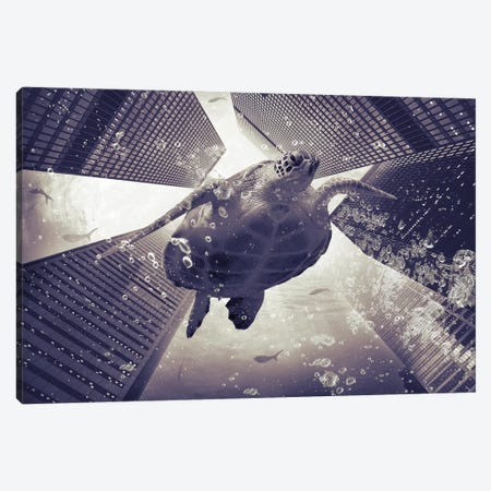 Dormiveglia - Sea Turtles Canvas Print #SOA20} by Soaring Anchor Designs Canvas Wall Art