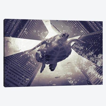 Dormiveglia - Sea Turtles Canvas Print #SOA20} by Soaring Anchor Designs Canvas Wall Art