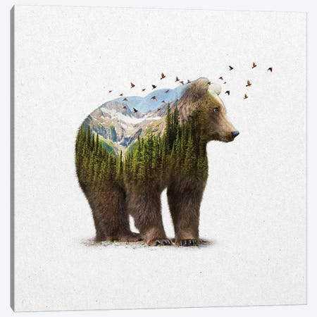 Double Exposure - Bear Canvas Print #SOA21} by Soaring Anchor Designs Canvas Art