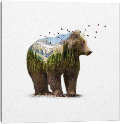 Double Exposure - Bear Canvas Art Print