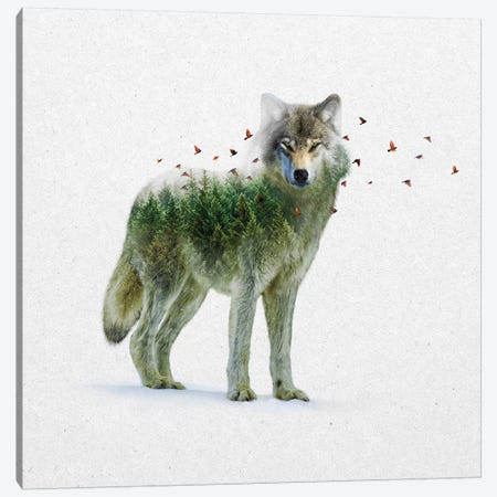 Double Exposure - Wolf Canvas Print #SOA22} by Soaring Anchor Designs Canvas Art