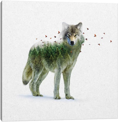 Double Exposure - Wolf Canvas Art Print