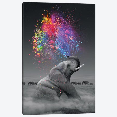 Elephant - Color Explosion Canvas Print #SOA27} by Soaring Anchor Designs Canvas Print