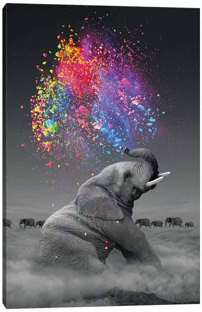 Elephant - Color Explosion Canvas Art Print